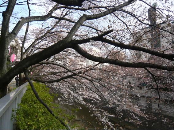 tokyo3_blog1